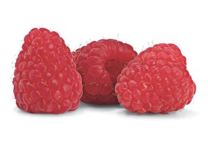 comp-1501958-raspberries